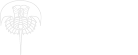 Treatise Online logo