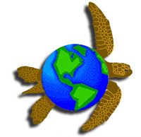 Contemporary Herpetology logo - sea turtle